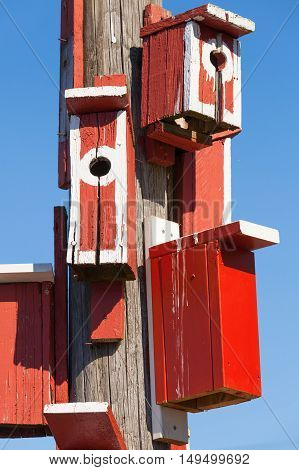 Bright Red Nesting Boxes On Wooden Post