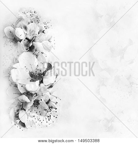 Greeting card with flowers on hazed background in black and white design