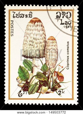 LAOS - CIRCA 1985 : Cancelled postage stamp printed by Laos, that shows Coprinus Comatus mushroom.