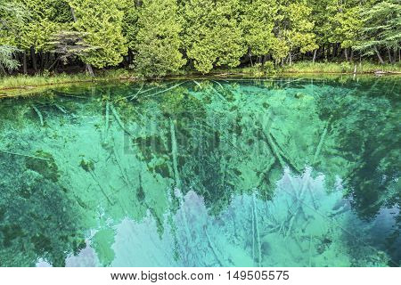 Lime-encrusted tree trunks lie beneath the clear waters of Michigan's Kitch-it-kipi (The Big Spring) not far from Manistique.