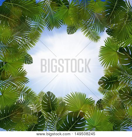 Illustration of palm leaves frame with sky background