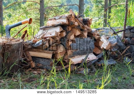 Firewood collected woodpile and ax stuck in an old stump in the Karelian forest on a bright sunny day.
