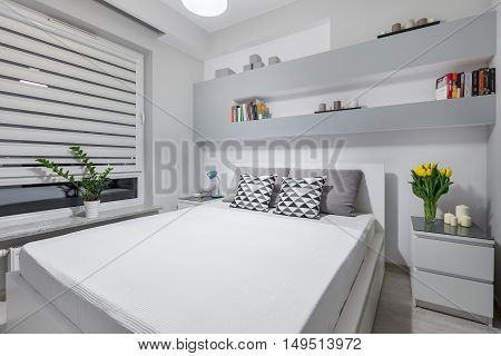 Light And Spacious Bedroom