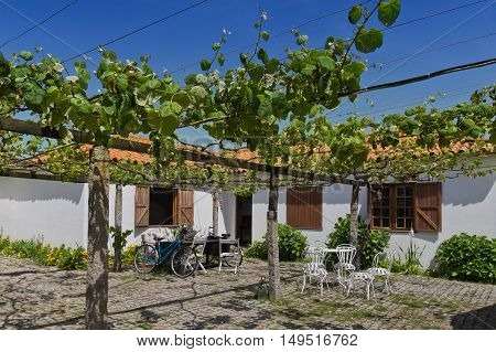 Portuguese country cotage vineyard on a bright sunny day