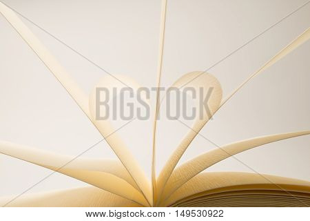 Blank Book Pages Forming A Heart Shape