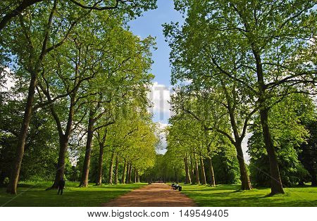 London, United Kingdom - May 14, 2014. Alley in Kensington Gardens in London, with trees and people.