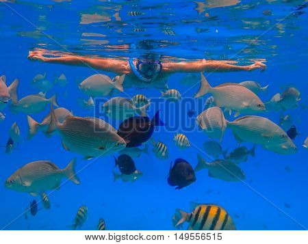 Man With Black Hair Has Been Snorkeling On The Island Of San Andres In The Caribbean Sea. He Feeds T