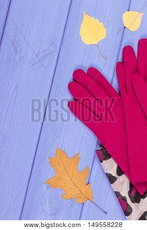 Woolen Gloves And Shawl For Woman On Boards, Clothing For Autumn Or Winter