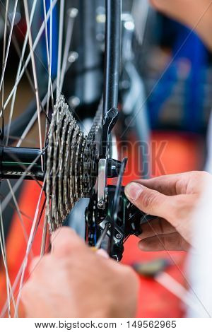 Bike mechanic working on gears of bicycle