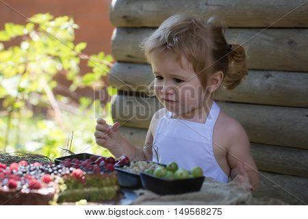 Little Boy Eats Red Raspberry
