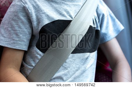 Little boy sit in the car seat with sit belt on for safety