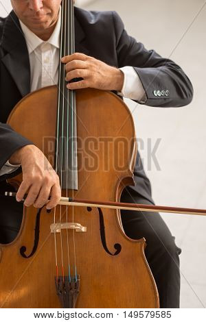 Professional Cellist Playing His Instrument