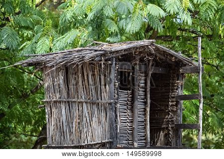 Closeup of a birdhouse on a tree made of wood and straws