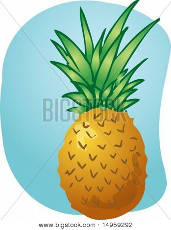 Sketch of pineapple fruit. Hand-drawn lineart look illustration