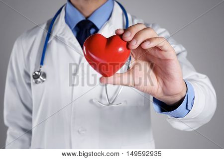 Male doctor holding red heart on grey background, closeup