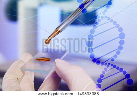 Scientist hand in glove working with sample on microscope slide at laboratory, closeup. DNA research technology concept.