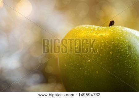 Wet green apple closeup with copy space