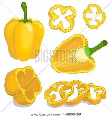 Pepper set with slices isolated on white. Pieces and half of paprika. Vector illustration.