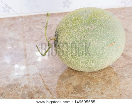 Green Japanese Melon On Counter In Kitchen