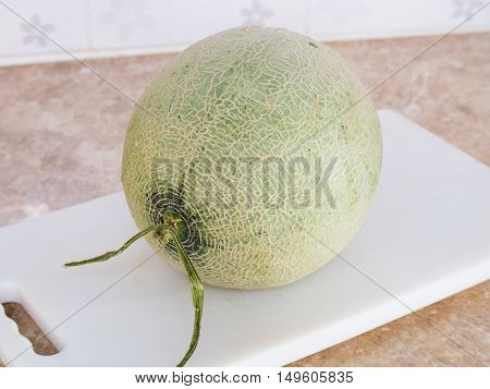 Green Japanese Melon On A White Block In Kitchen