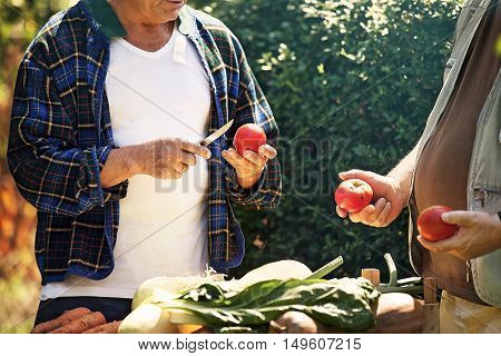 Farmer is showing tomato to his friend.