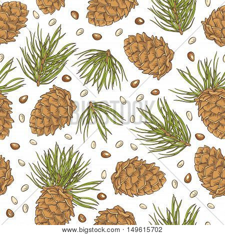Hand drawing pine cones and pine nuts on white background. Vector seamless pattern.