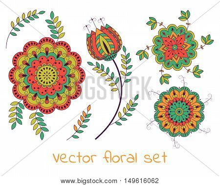 Vector floral collection with beautiful colorful flowers.