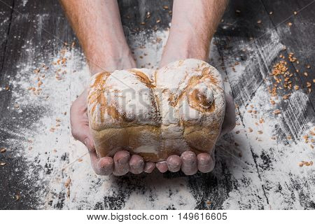 Warm fresh bread. Baking and cooking concept background. Hands of baker carefully hold loaf on rustic wooden table, sprinkled with flour. Stained dirty hands. Soft toning