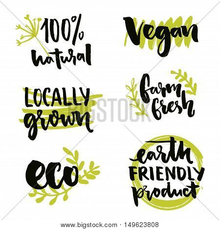 Locally grown label and vegan sign. Earth friendly product, Gmo free sticker design. Farm fresh inscription. Vector 100 natural badges with hand drawn doodles and text