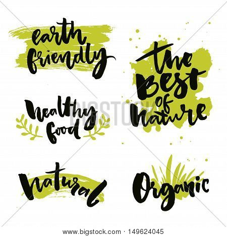 Natural product badges and labels. Stickers with calligraphy words. The best of nature, healthy food, earth friendly. Organic food