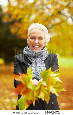 Senior Woman Collecting Maple Leaves
