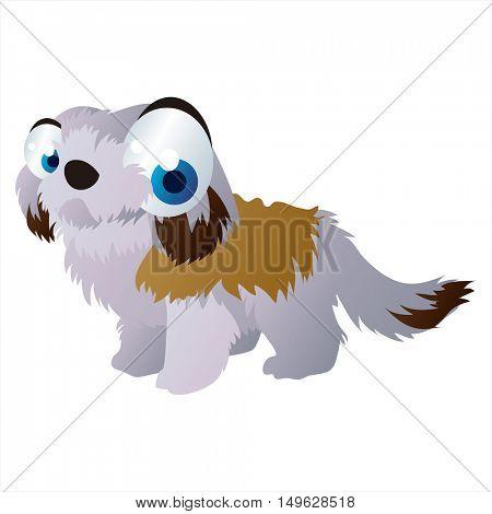 cute vector comic cartoon animal. Cool colorful Zuchon Dog