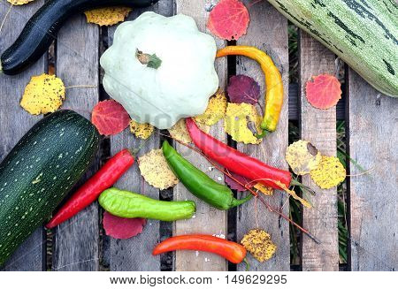 Autumn still-life with ripe vegetables. Hot pepper,  squash, zucchini on old table top view closeup