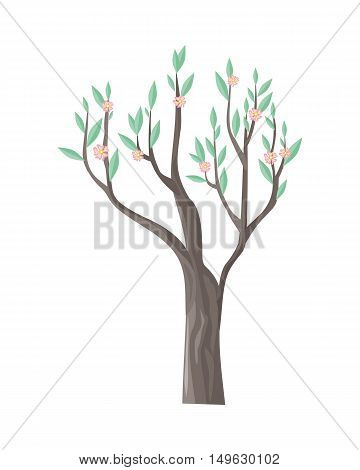 Vector tree in blossom. Green stylish plant isolated on white with beautiful flowers. Cartoon style tree. Editable element for your design. Part of series of different trees. Vector illustration.