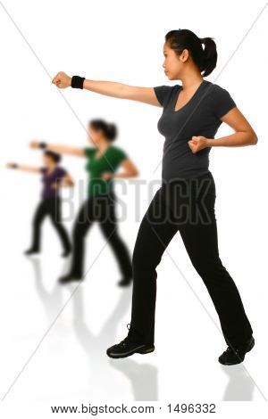 Asian Woman In Combat Stance