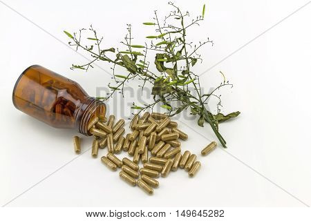Colorful drug pill in black bottle and dry of Andrographis paniculata plant on white background