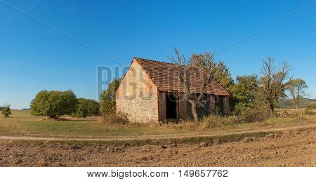 Panorama rural landscape. Old barn and tree against blue sky background. Abandoned farm buildings with weathered wall.