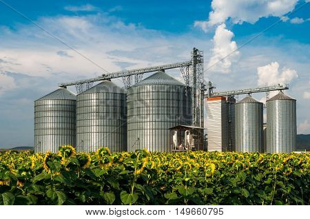 Silos. Warehouse storage of the harvest. Field with sunflowers.