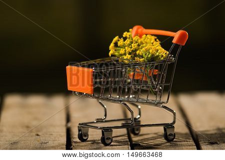 Miniature shopping trolley sitting on wooden surface with bouquet of yellow flowers inside it, magicians concept.
