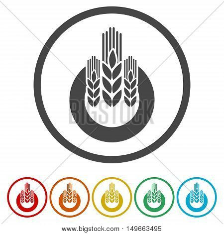 Agricultural sign icon. Wreath of Wheat on white