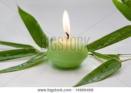 Brennende Kerze und Bambus Blätter