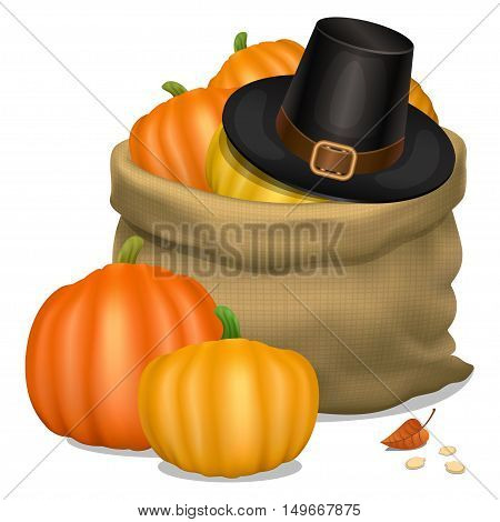 Happy Thanksgiving card. Hat of piligrim with bag full orange pumpkins. Vector illustration