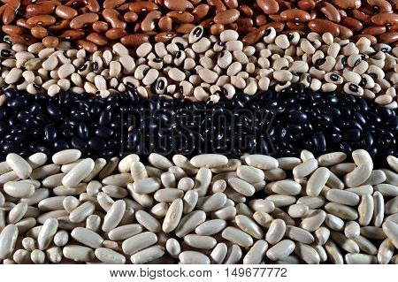 Varied diferent beans,mixed in the studio table.