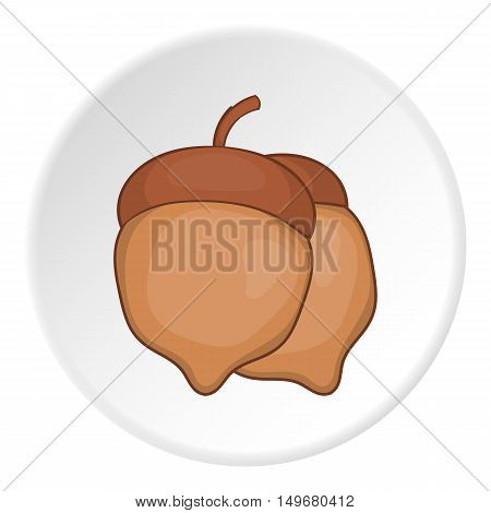 Two acorn icon in cartoon style on white circle background. Plant symbol vector illustration