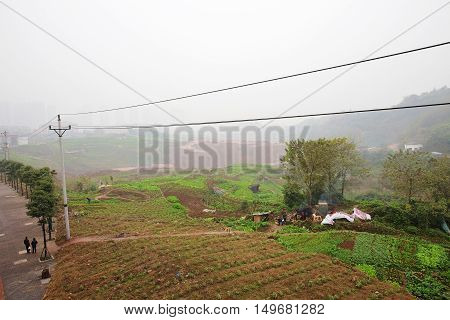 Urban farming area on the outskirts of Chongqing