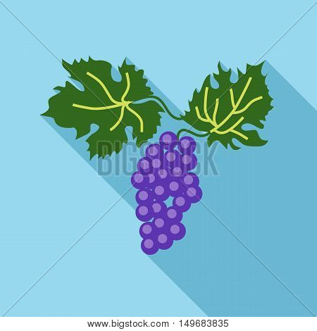 Branch of grape with leaves icon in flat style with long shadow. Fruits symbol vector illustration