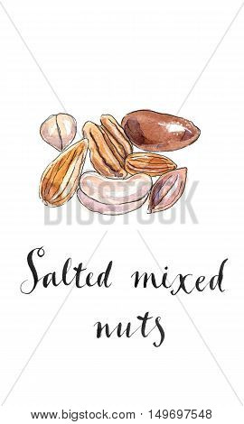 Assorted mixed nuts: hazelnuts walnuts almonds pine nuts pistachio cashew macadamia nut. Hand drawn - watercolor Illustration