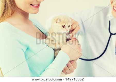 medicine, pet, animals, health care and people concept - close up of happy woman and veterinarian doctor with stethoscope checking scottish fold kitten up at vet clinic