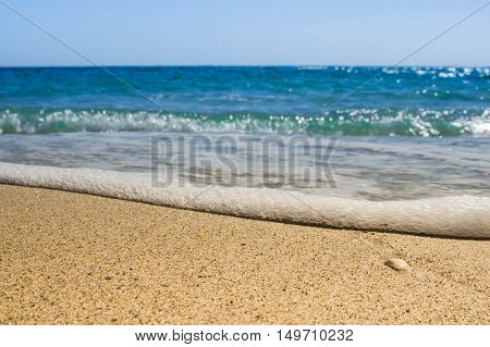 Waves sea shells lying on sand during sunset