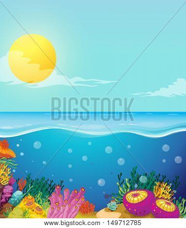 Scene of ocean and underwater illustration